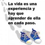 La vida es una experiencia