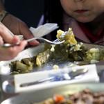 (Andalucía)- La Junta amplía las comidas en verano a 5.400 menores de 73 centros de toda Andalucía