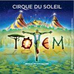(Madrid)- Sesión solidaria del Cirque du Soleil a beneficio de Fundación Adsis