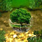 """""""La Situación del Mundo 2017"""", el informe que se centra en la Educación Ecosocial para la supervivencia de la especie humana"""