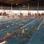 Valencia acoge el Campeonato de España AXA de Promesas Paralímpicas de Natación