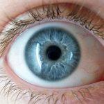 (Murcia) – Una nueva herramienta pionera en el mundo permitirá visualizar el ojo al completo