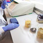 Un test detecta los transgénicos de nuestros alimentos