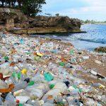 Una enzima creada por azar ayudará a terminar con la contaminación producida por los plásticos