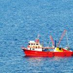 MAPFRE se une a Oceana para acabar con la pesca pirata