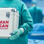 (Andalucía) – Las donaciones de órganos suben un 10% en los primeros cinco meses del año