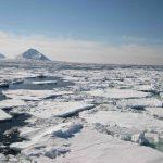 Se debate el presente y el futuro de la investigación polar española