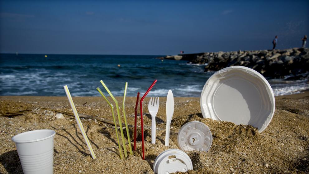 El Consejo prohíbe los plásticos de un solo uso