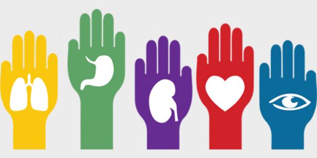 Sanidad, la ONT y las Asociaciones de Pacientes rinden un especial homenaje a la donación pediátrica en el Día Nacional del Donante de Organos