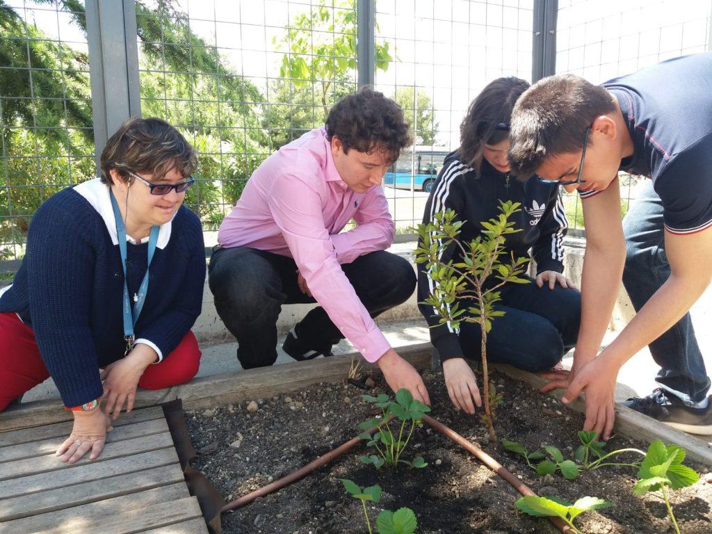 Las personas con discapacidad intelectual, comprometidas con el medio ambiente gracias al proyecto 'Emprendimiento medioambiental'  de Down Madrid