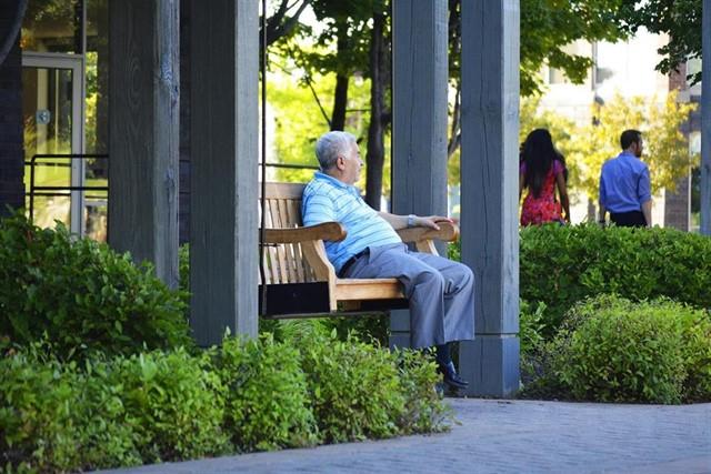 La mitad de los pacientes mayores de 65 años con insuficiencia cardíaca presentan diabetes