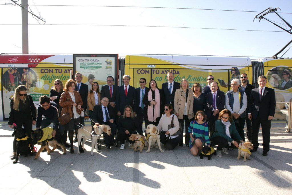 Los perros guía de la ONCE 'viajan' con el Metro Ligero Oeste