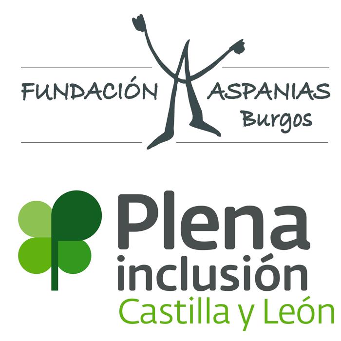 """Fundación Aspanias Burgos ha acogido la primera reunión de trabajo del proyecto accesibilidad cognitiva al patrimonio europeo """"Easy to Read Easy to Access"""""""