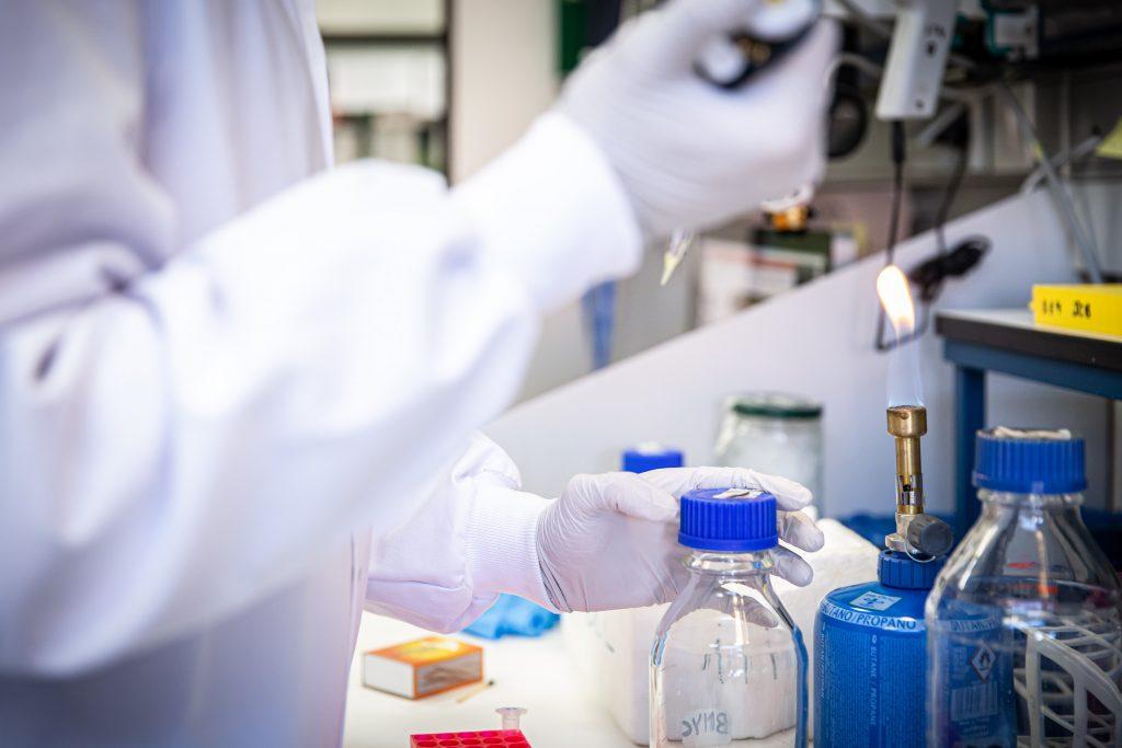 Un equipo de investigadores desarrolla fármacos antivirales para impedir el transporte del coronavirus dentro de las células