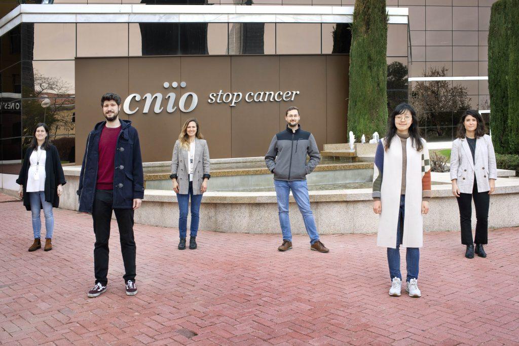 Seis investigadores buscarán nuevas estrategias contra el cáncer gracias a la comunidad de donantes Amigos/as del CNIO